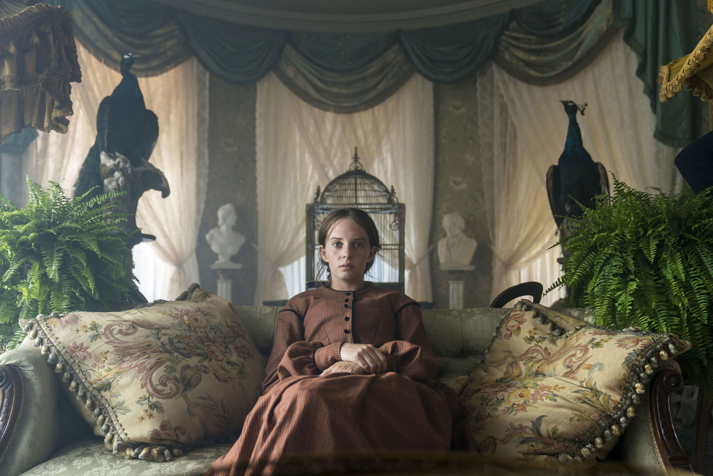 LITTLE WOMEN: Maya Hawke