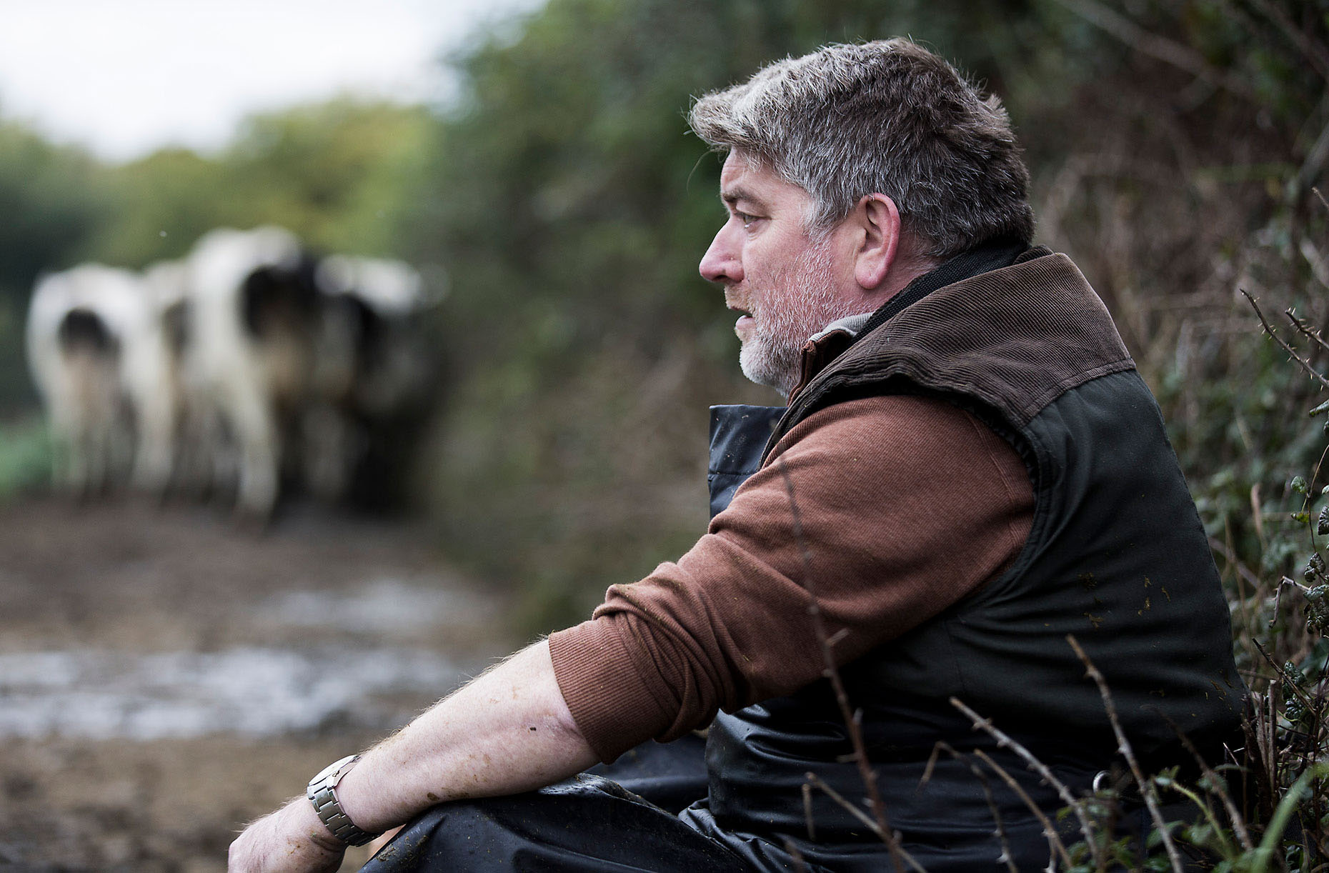 SMALLTOWN : Director:Gerard Barrett Cast:Pat Shortt